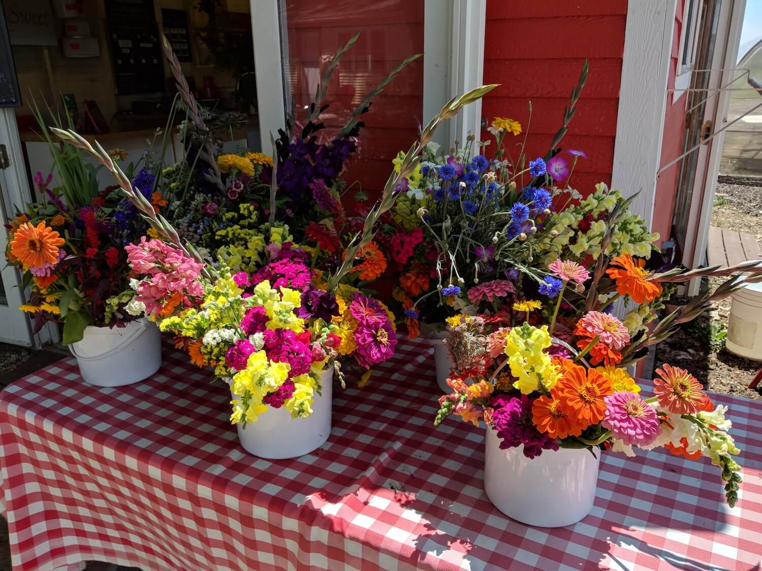 Fresh, Local, Sustainably Grown Flowers